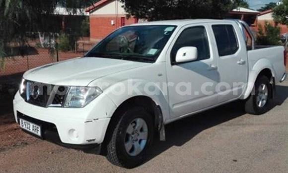 Buy Used Nissan Navara White Car in Francistown in North-East