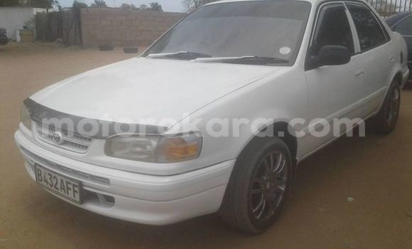 Buy Used Toyota Corolla White Car in Gaborone in Gaborone