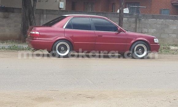 Buy Used Honda Civic Red Car in Broadhurst in Gaborone