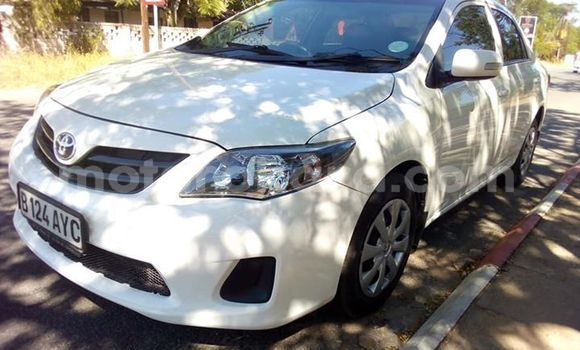 Buy Used Toyota Corolla White Car in Francistown in North-East