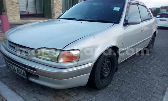Buy Used Toyota Corolla Silver Car in Francistown in North-East