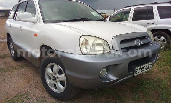 Buy Used Hyundai Santa Fe White Car in Francistown in North-East