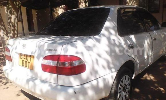 Buy Used Toyota Corolla White Car in Broadhurst in Gaborone