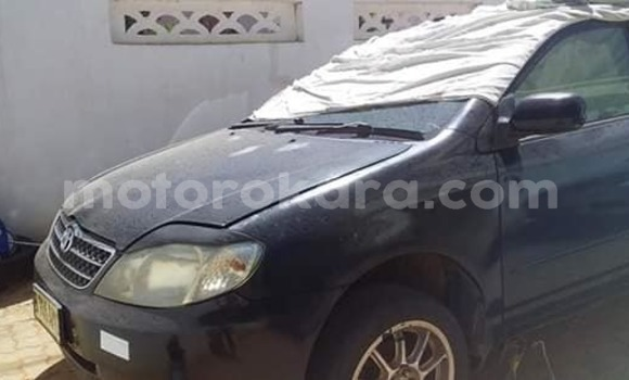 Buy Used Toyota Corolla Blue Car in Gaborone in Gaborone