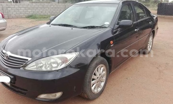 Buy Used Toyota Camry Black Car in Mogoditshane in Kweneng