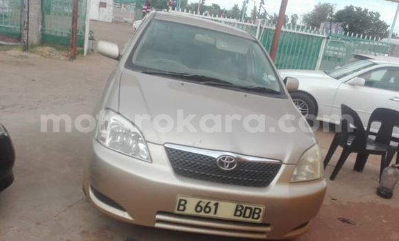 Buy Used Toyota Runx Other Car in Broadhurst in Gaborone