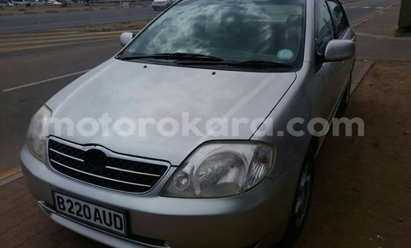 Buy Used Toyota Corolla Silver Car in Broadhurst in Gaborone