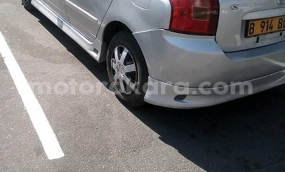 Buy Used Toyota Runx Silver Car in Francistown in North-East