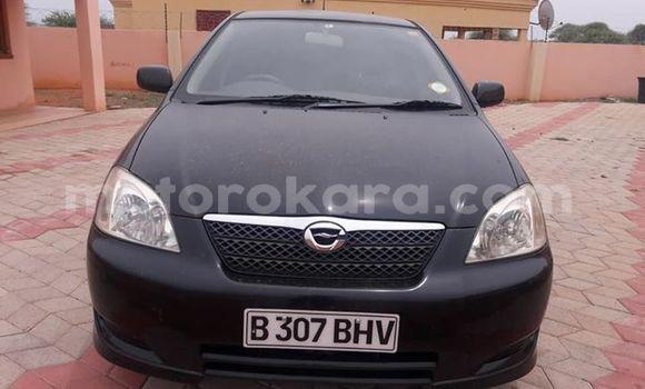 Buy Used Toyota Runx Black Car in Gaborone in Gaborone